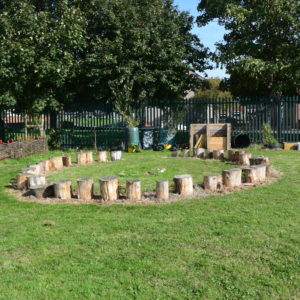 A Photo of a fire pit area